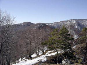 Zasnežená krajina pohoria Rokoš